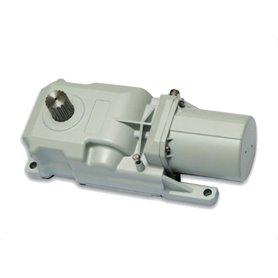 6170077 GENIUS Motore Roller