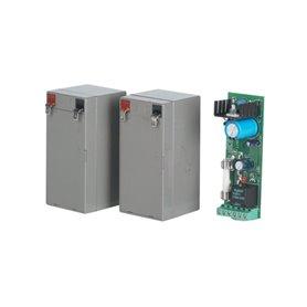 P125008 BFT Virgo Bat Carica Batterie Con Batterie Virgo