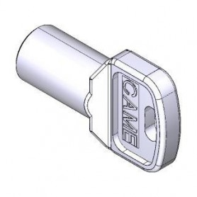 119RIY077 CAME Confezione 10 Pezzi Chiavi Trilobate